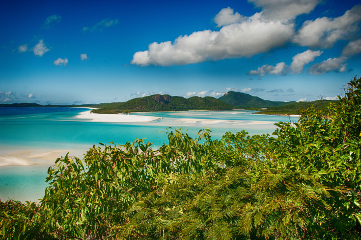 Wonderful sea and forest of Queensland. Whitehaven Beach - Austr